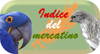 Verdi & Ardesia - IL MERCATINO